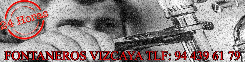 Fontanería en Vizcaya